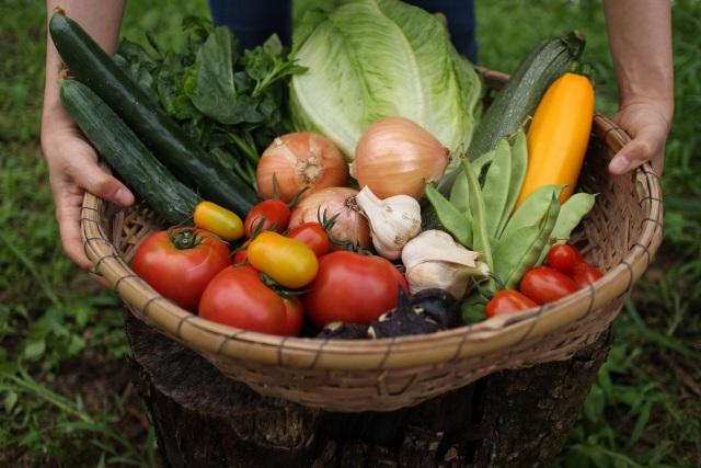 新鮮な野菜がかごいっぱいに並んだ福島新ブランドの画像